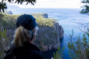 Pretty amazing short walk to Waterfall Bay along the south coast of the Tasman Peninsula. On the way home we saw a baby snake, wallabies, and some fellow deer. We're staying with a classic local who knows every nook of this place and helped build the walking tracks we've been walking.